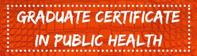 graduate certificate in public health