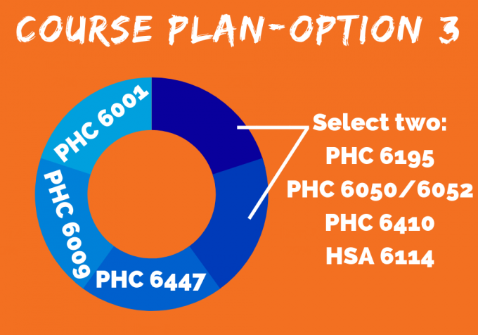 HIV/AIDS Certificate Course Plan (Option 3)
