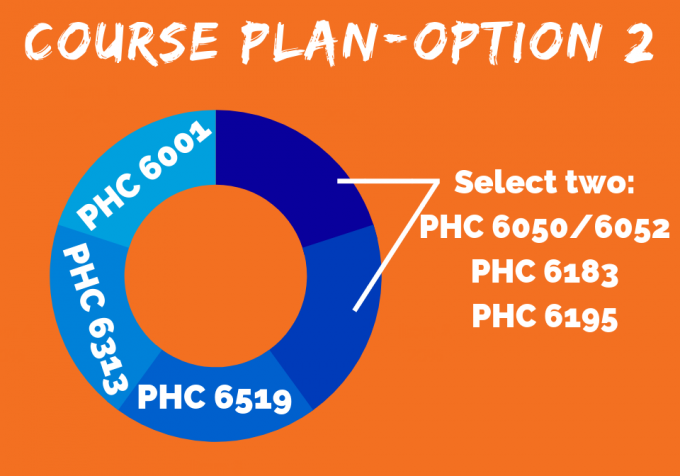 Veterinary Public Health Certificate Course Plan (Option 2)