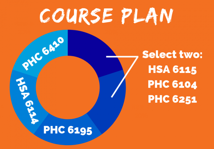 Community Health Certificate Course Plan